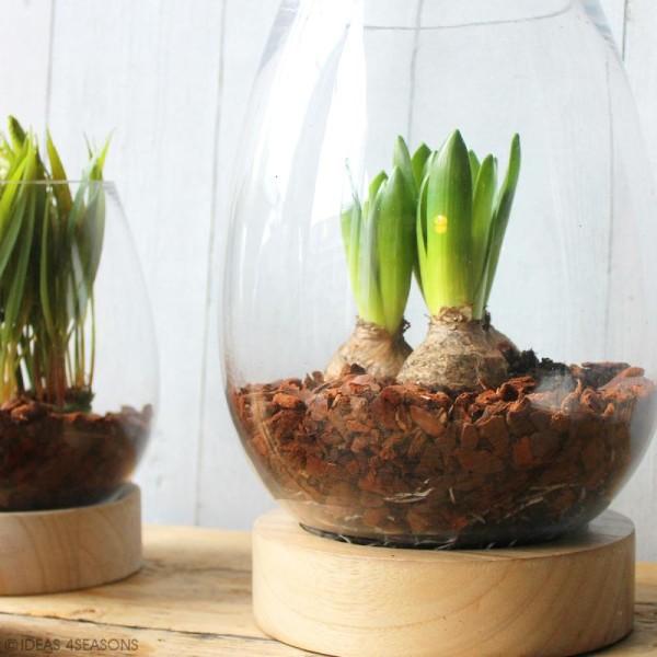 Vase en verre avec base en bois - Ovoïde - 18 x 14 cm - Photo n°2
