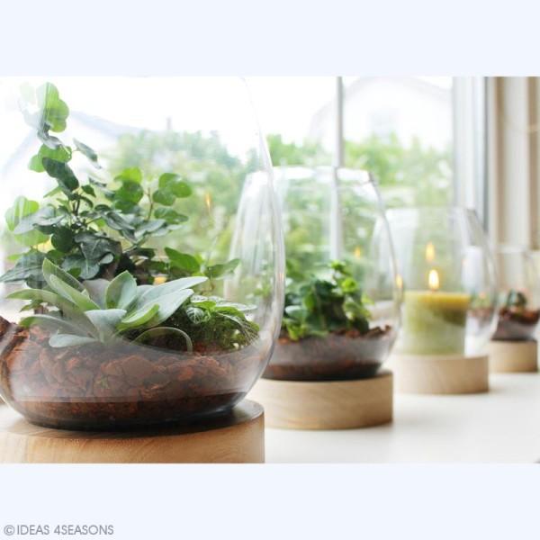 Vase en verre avec base en bois - Ovoïde - 18 x 14 cm - Photo n°4