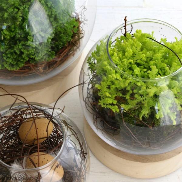 Vase en verre avec base en bois - Rond - 11 x 10 cm - Photo n°4