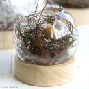 Vase en verre avec base en bois - Rond - 12 x 13 cm - Photo n°3