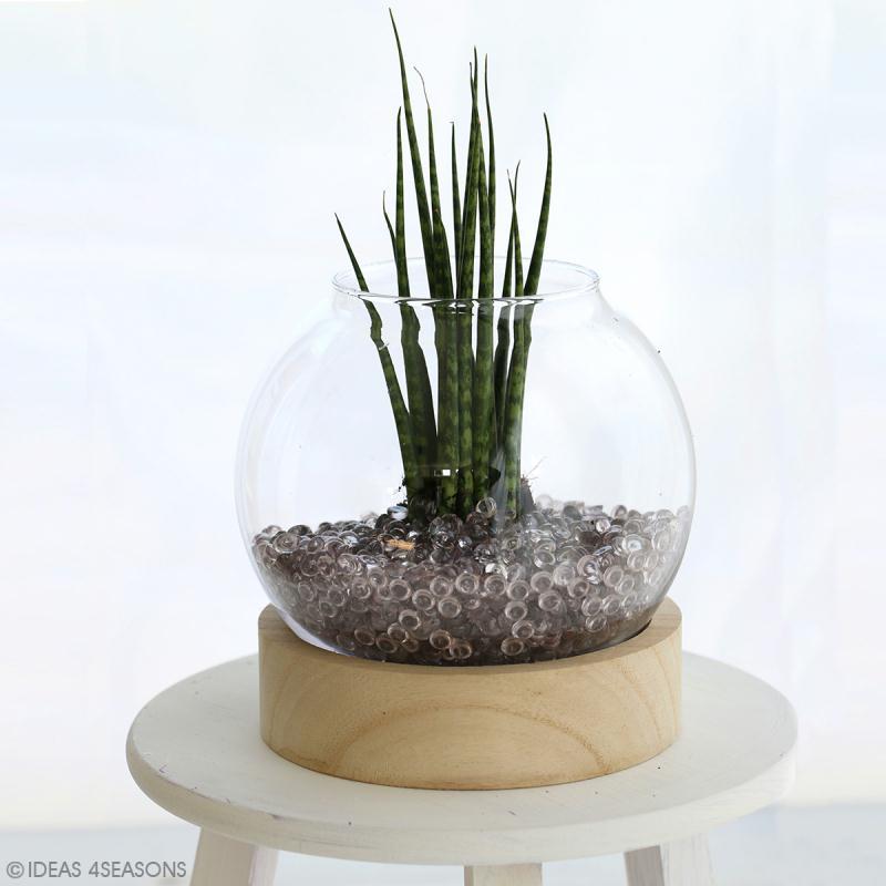 Vase en verre avec base en bois - Rond - 21 x 20 cm - Photo n°2