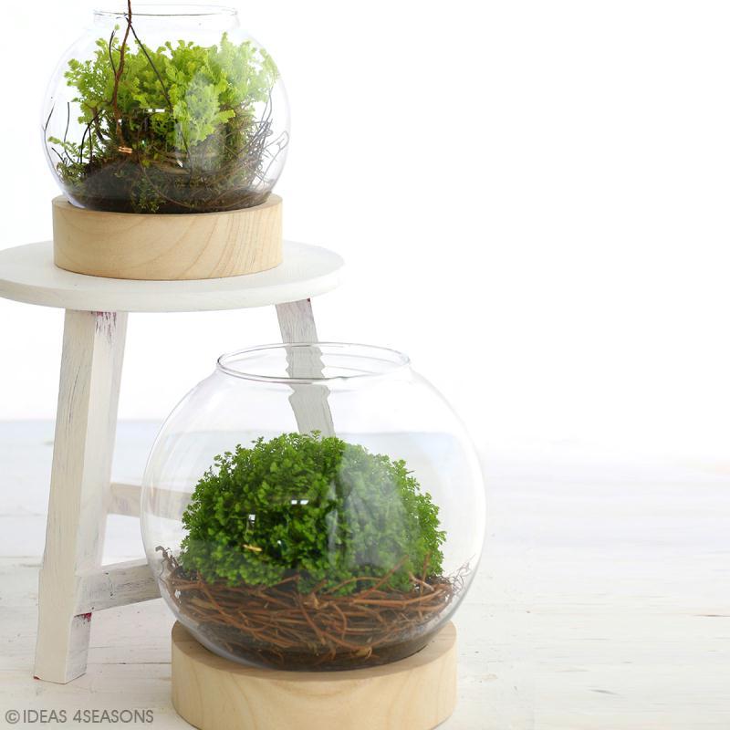 Vase en verre avec base en bois - Rond - 21 x 20 cm - Photo n°3