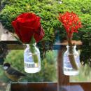 Assortiment de 50 mini bouteilles en verre - 6,5 x 3,5 cm - Photo n°4
