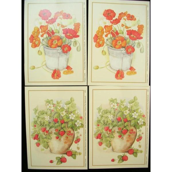 LOT DE 4 CARTES CARTONNES 9*13CM : fleurs et fraisiers - Photo n°1