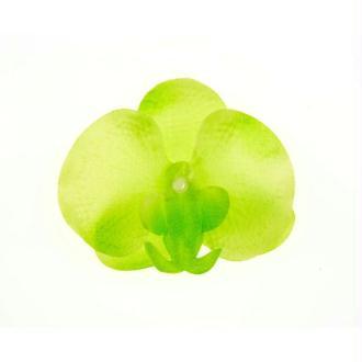 Orchidées à parsemer (x6) vert anis/blanc