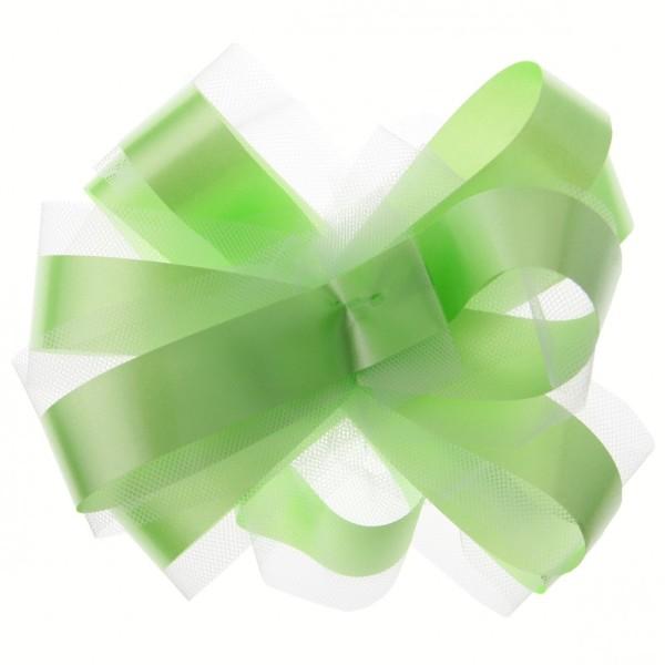 Kit de déco voiture vert anis - Photo n°1