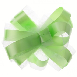 Kit de déco voiture vert anis