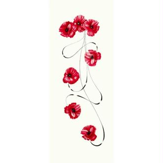 Image 3D Fleur - Coquelicot et volute 20 x 50 cm