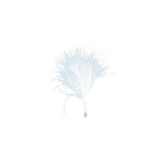 Plumes blanc (x20)