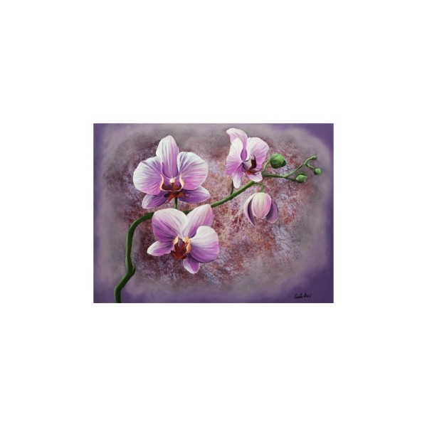 Image 3D - gk3040032 - 30x40 - orchidee rose - Photo n°1