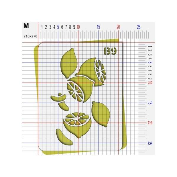 Pochoir citron agrume - Photo n°4
