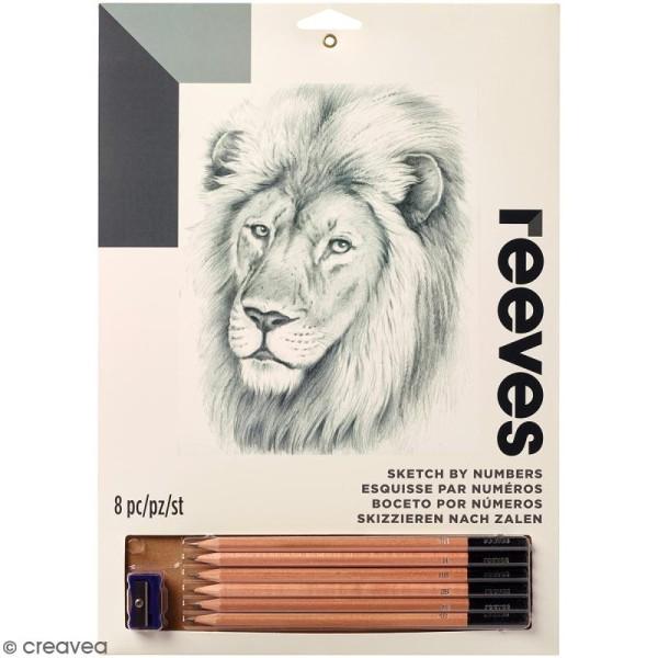 Dessin à étapes Reeves - Lion - 22,5 x 30 cm - Photo n°1