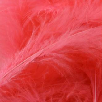 Plumes marabout corail fluo x10
