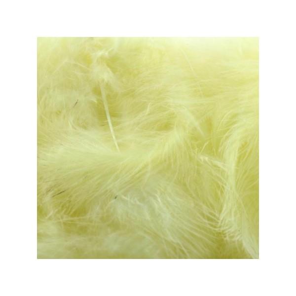 Plumes marabout jaune clair x10 - Photo n°1