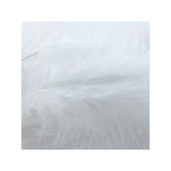 Plumes marabout blanches x10 - Photo n°1
