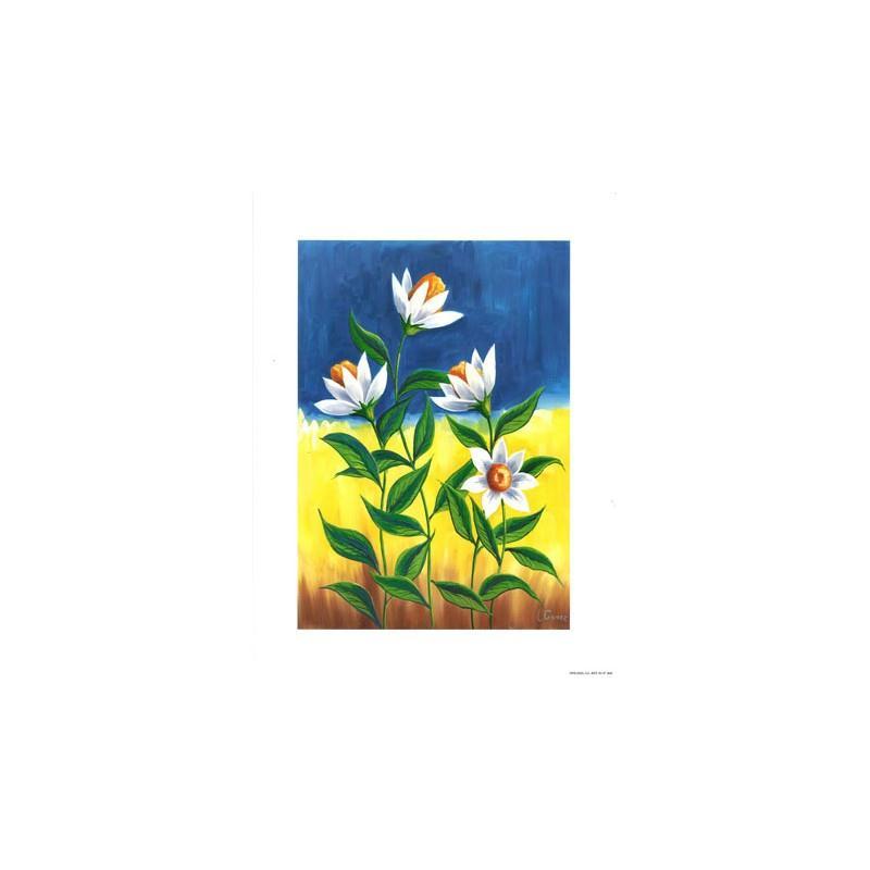Image 3D - Fleurs blanches - 24 x 30 cm - Photo n°1