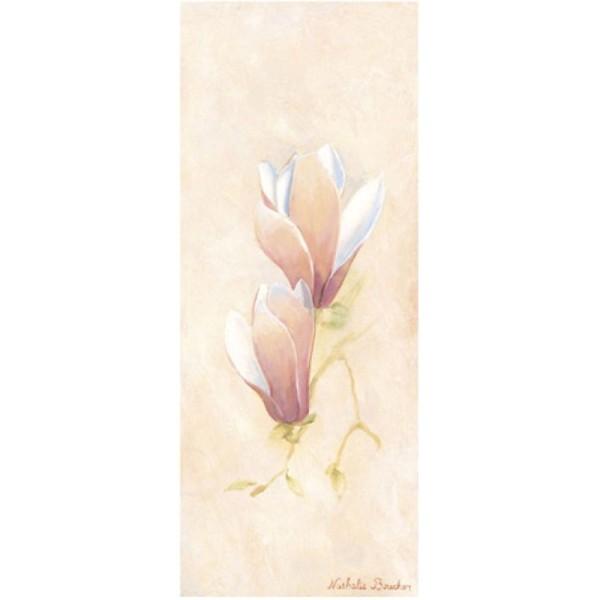 Image 3D - 1000015 - 20x50 - Crocus roses droit - Photo n°1