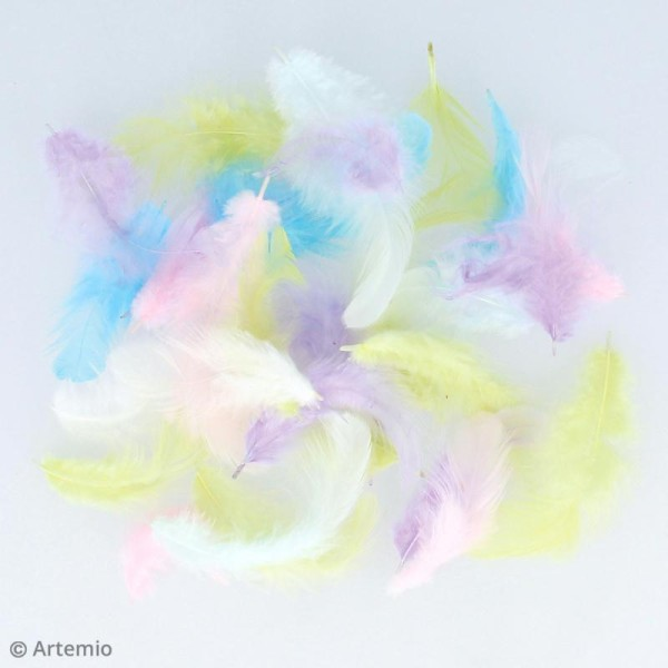 Plumes multicolores Artemio - Rainbow - 10 g - Photo n°2
