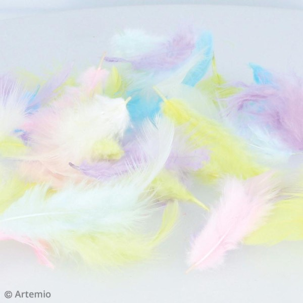 Plumes multicolores Artemio - Rainbow - 10 g - Photo n°3