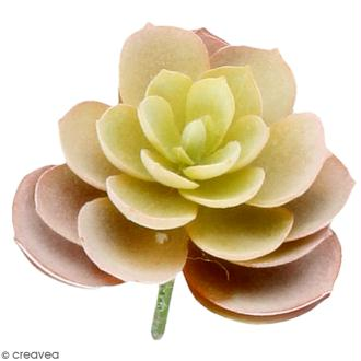 Plante artificielle - Echeveria velours - Plastique - 9 x 6 cm