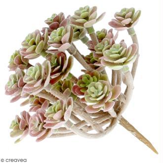 Plante artificielle - Sedum velours - Plastique - 10 x 8 cm