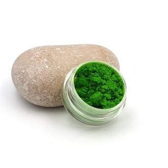 Poudre De Paillettes Pour Créations En Résine Couleur Vert - 5 Grammes