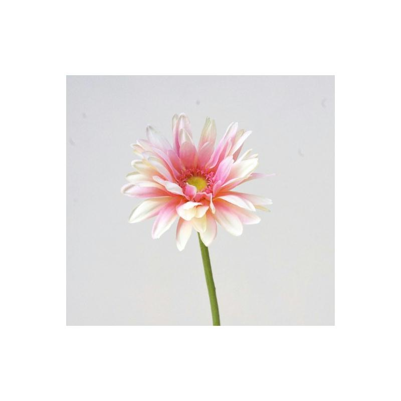 gerbera artificielle h56cm cr me rose fleur 11cm fleurs. Black Bedroom Furniture Sets. Home Design Ideas