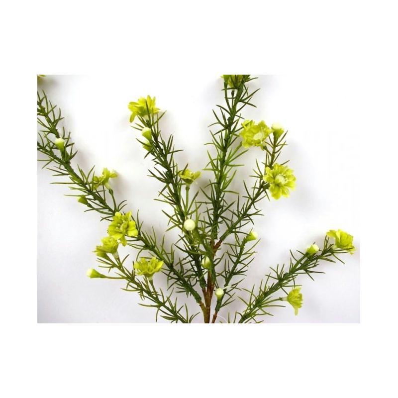 fleurs de cire artificielles vertes h65cm fleurs. Black Bedroom Furniture Sets. Home Design Ideas