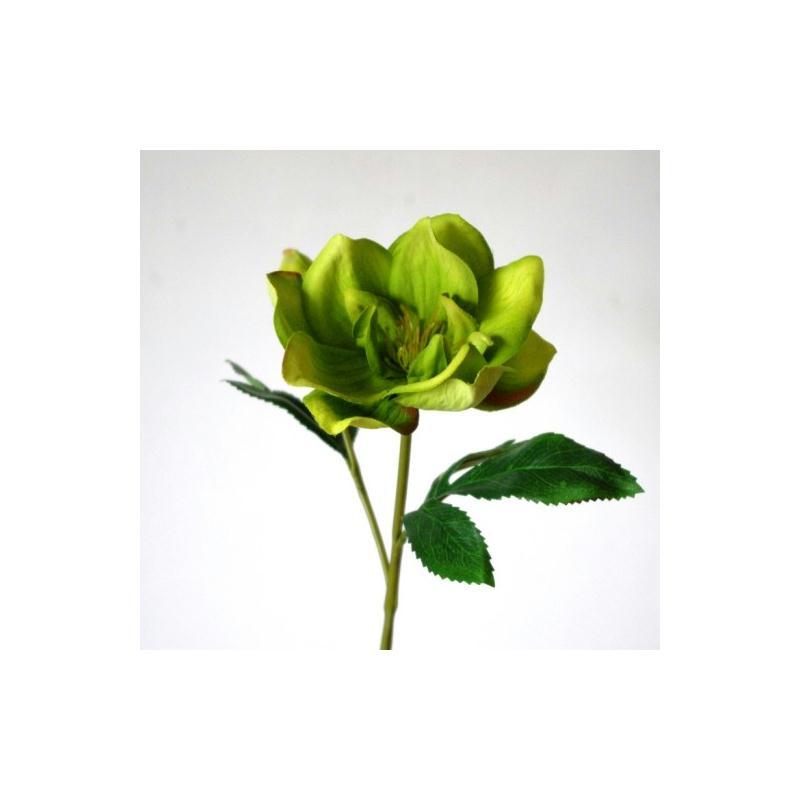 Hellebore artificielle verte h35cm fleurs artificielles for Plantes vertes artificielles haut de gamme