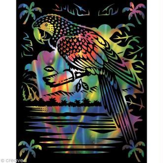 Carte à gratter Reeves Arc en ciel Perroquet - 20 x 25 cm