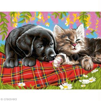 Peinture au numéro - Comme chien et chat - 30 x 39 cm