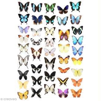 Image 3D Animaux - Papillons - 24 x 30 cm