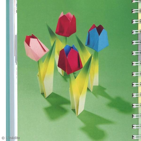 Livre L'origami de A à Z - Ashley Wood - Photo n°4