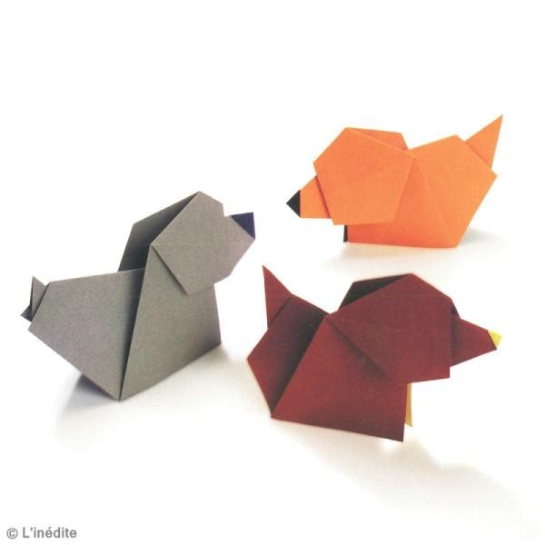 Livre L'origami de A à Z - Ashley Wood - Photo n°5