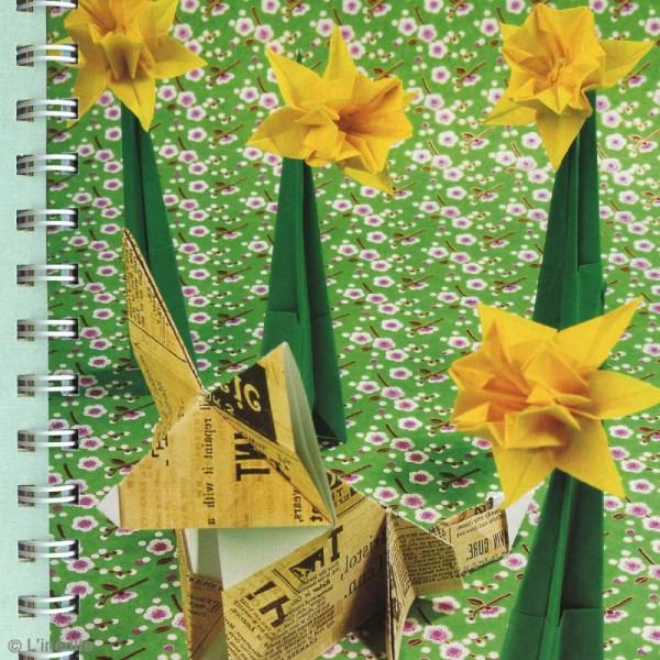 Livre L'origami de A à Z - Ashley Wood - Photo n°6