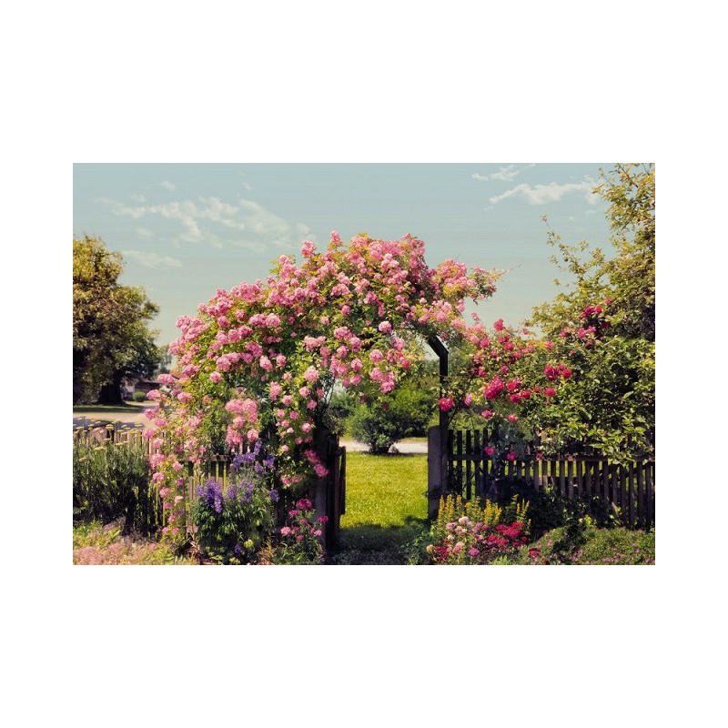 Papier peint jardin rose 254 x 368 cm papier imitation - Papier peint intisse cuisine ...