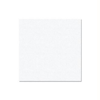 Papier Pollen carte 135 x 135 Blanc irisé x 25
