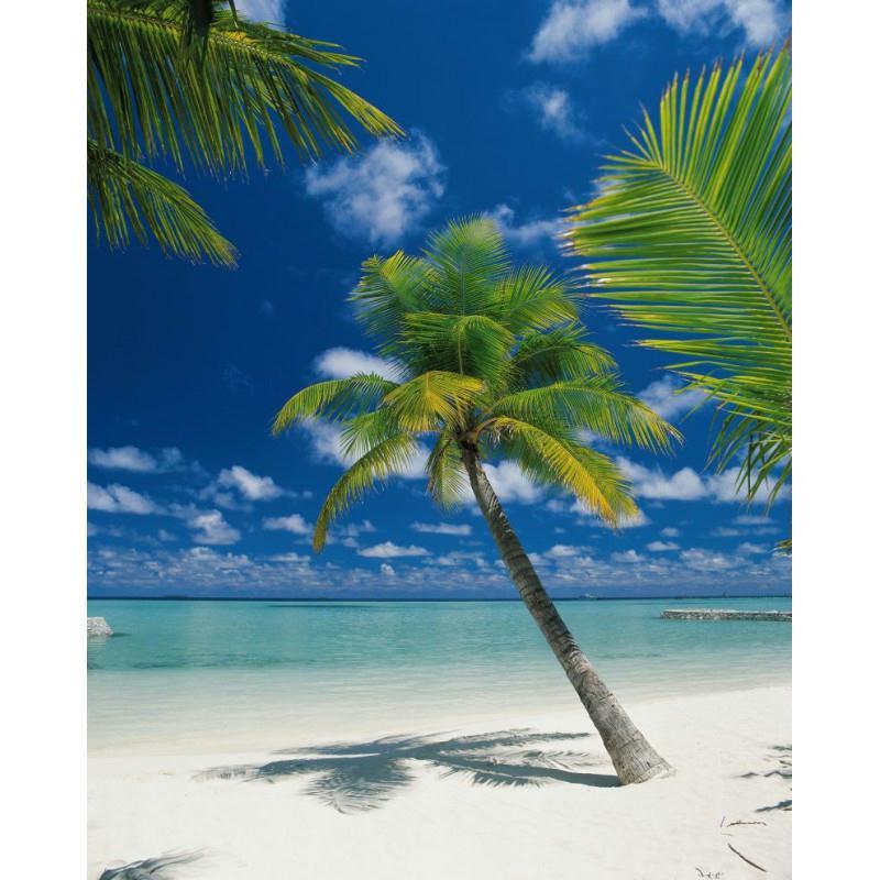 Papier peint ari atoll 254 x 184 cm papier imitation - Papier peint intisse cuisine ...