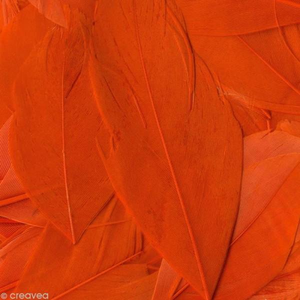 Plume ronde 6 cm - Orange x 3 gr - Photo n°1