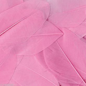 Plume ronde 6 cm - Rose clair x 3 gr