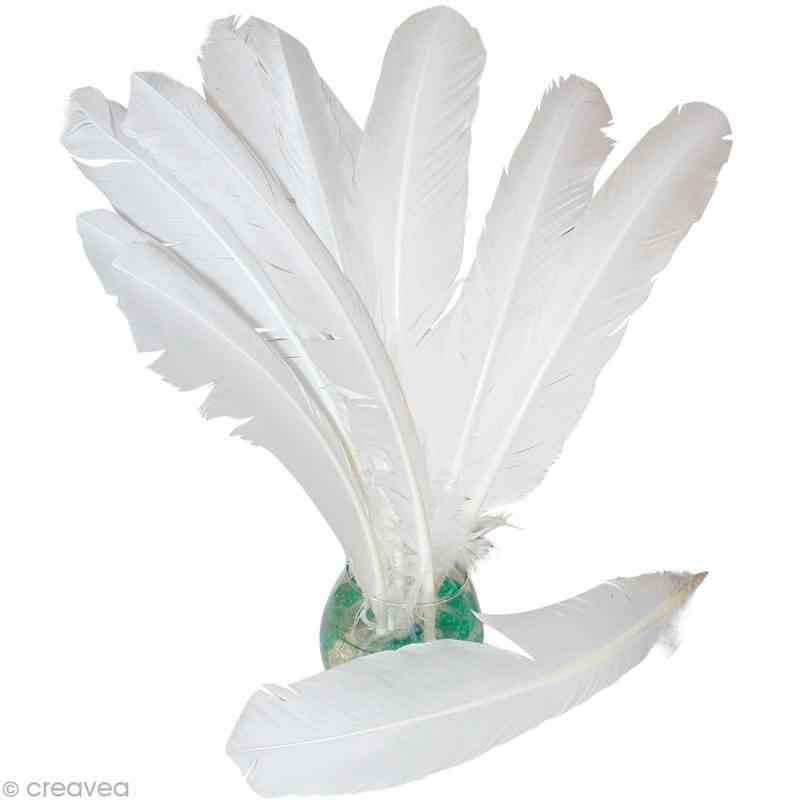 plume d 39 indien blanche 30 cm x 10 plumes blanches creavea. Black Bedroom Furniture Sets. Home Design Ideas