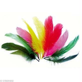 Plume nageoire d'oie Multicolore 17 cm x 20 gr