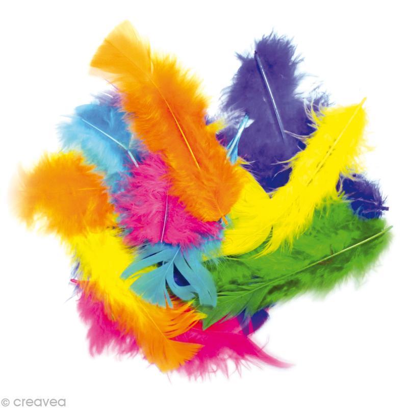 plume multicolore grande quantit x 250 g plumes d coration creavea. Black Bedroom Furniture Sets. Home Design Ideas