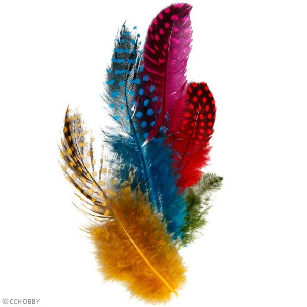 Plumes de pintade - Multicolores - 3 g - Photo n°2
