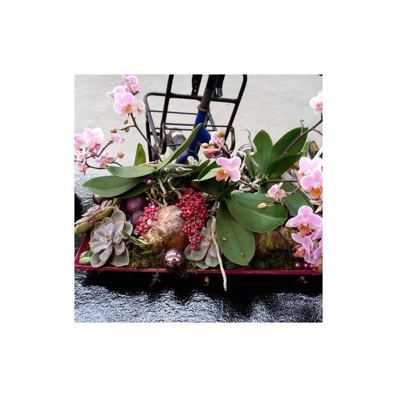 bouquet de poivre rose sec sur tige epices et graines creavea. Black Bedroom Furniture Sets. Home Design Ideas