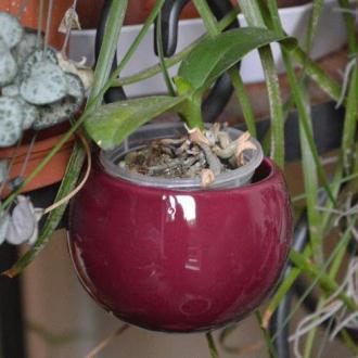 Mini cache-pot aimanté aubergine.  diamètre global environ 8 cm, intérieur environ 6.5 cm