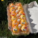 Oeuf de Pâques à décorer 6 cm x 12 - Photo n°6