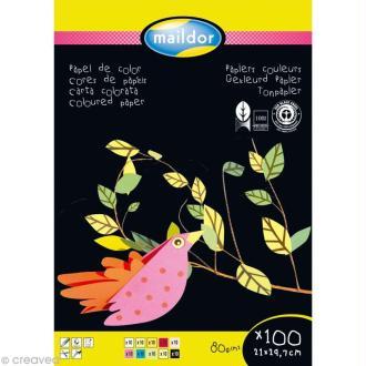 Bloc papier économique couleur A4 x 100 feuilles - 80 gr