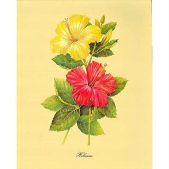 image 3d fleur coquelicot rouge 24 x 30 cm images 3d 24x30 cm creavea. Black Bedroom Furniture Sets. Home Design Ideas