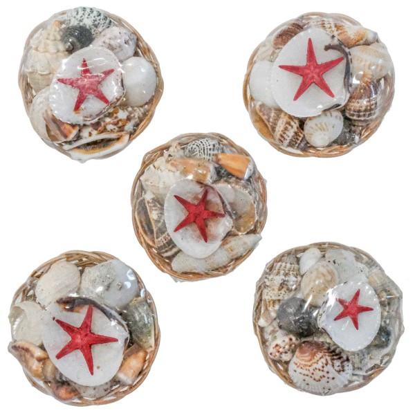Mini paniers de coquillages assortis - 5 cm - Lot de 5 - Photo n°1